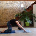 5 exercices pour soulager les maux de dos